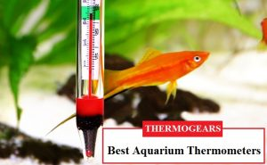 Aquarium-thermometer