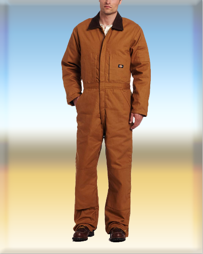 Dickies Mens Premium Insulated Duck Coverall