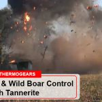 Hog Hunting Wild Boar Control With Tannerite