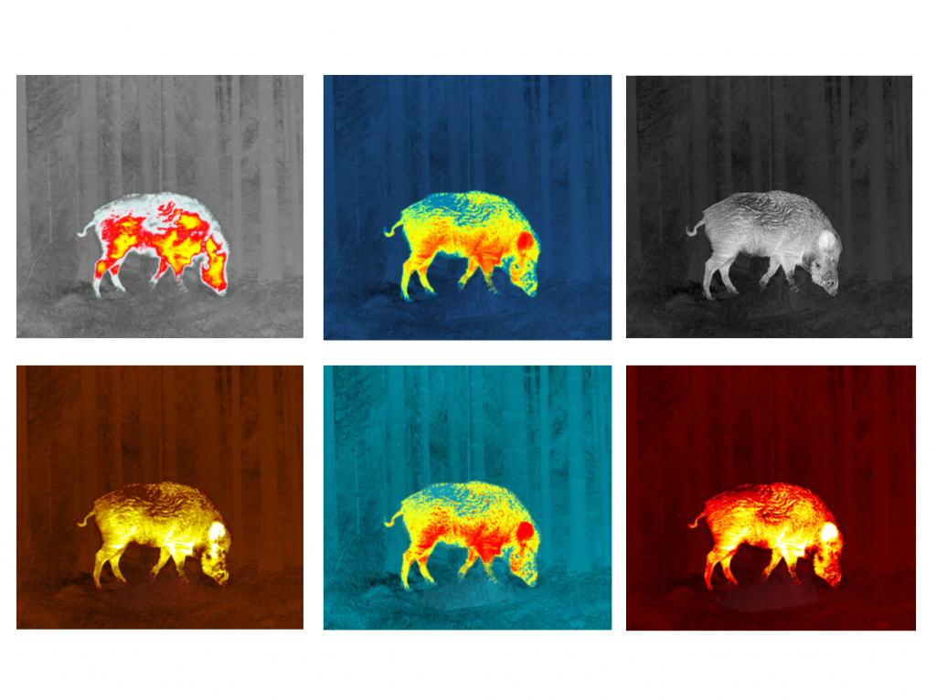 Thermion XQ38 color palettes