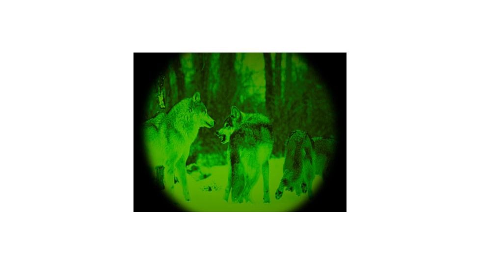 night vision magnification